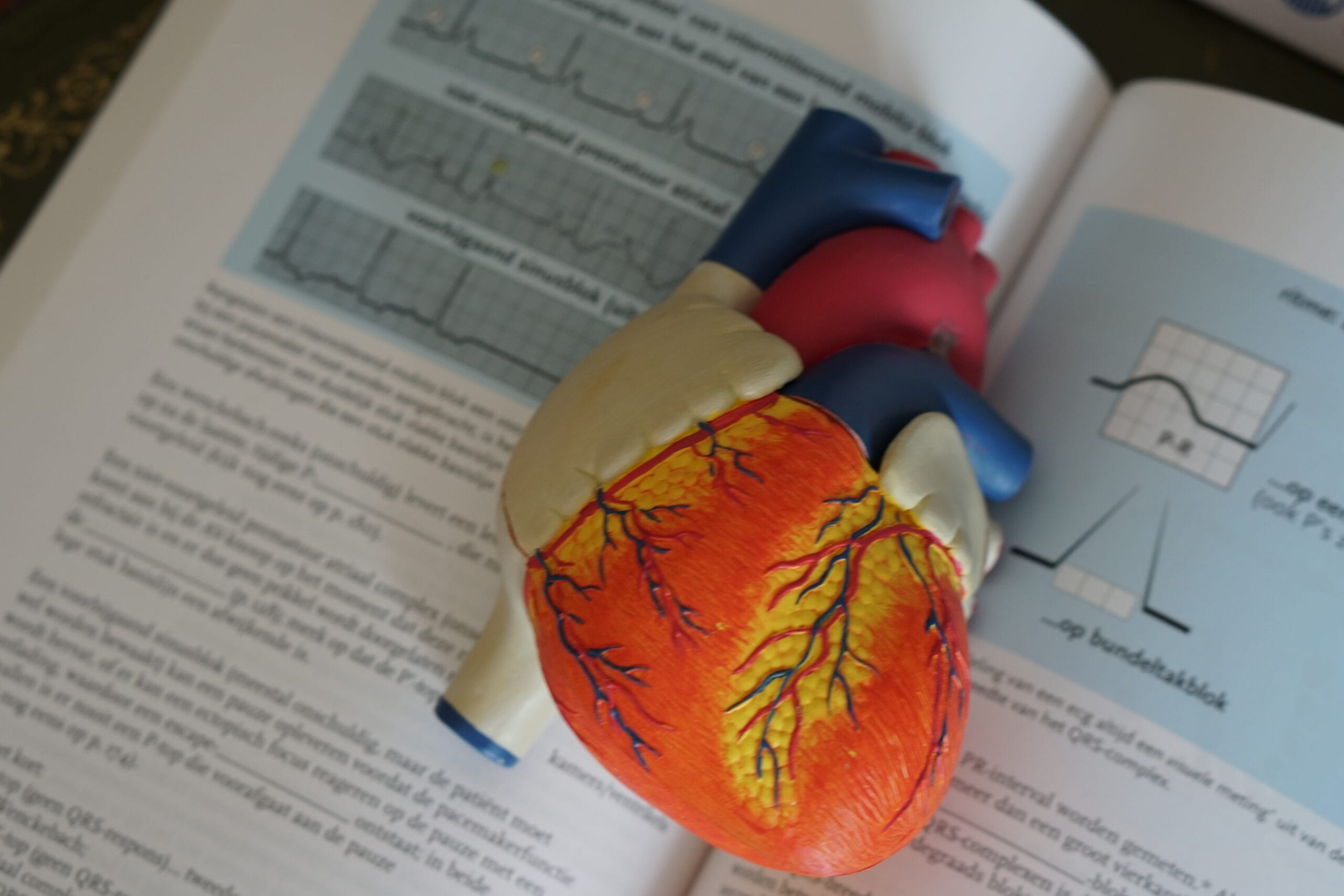Heart on text book. xxxx applied her theoretical knowledge to her practicum site in her first on hands experience as a cardiologist.